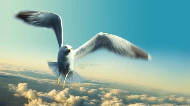3188-jonathan-livingston-seagull